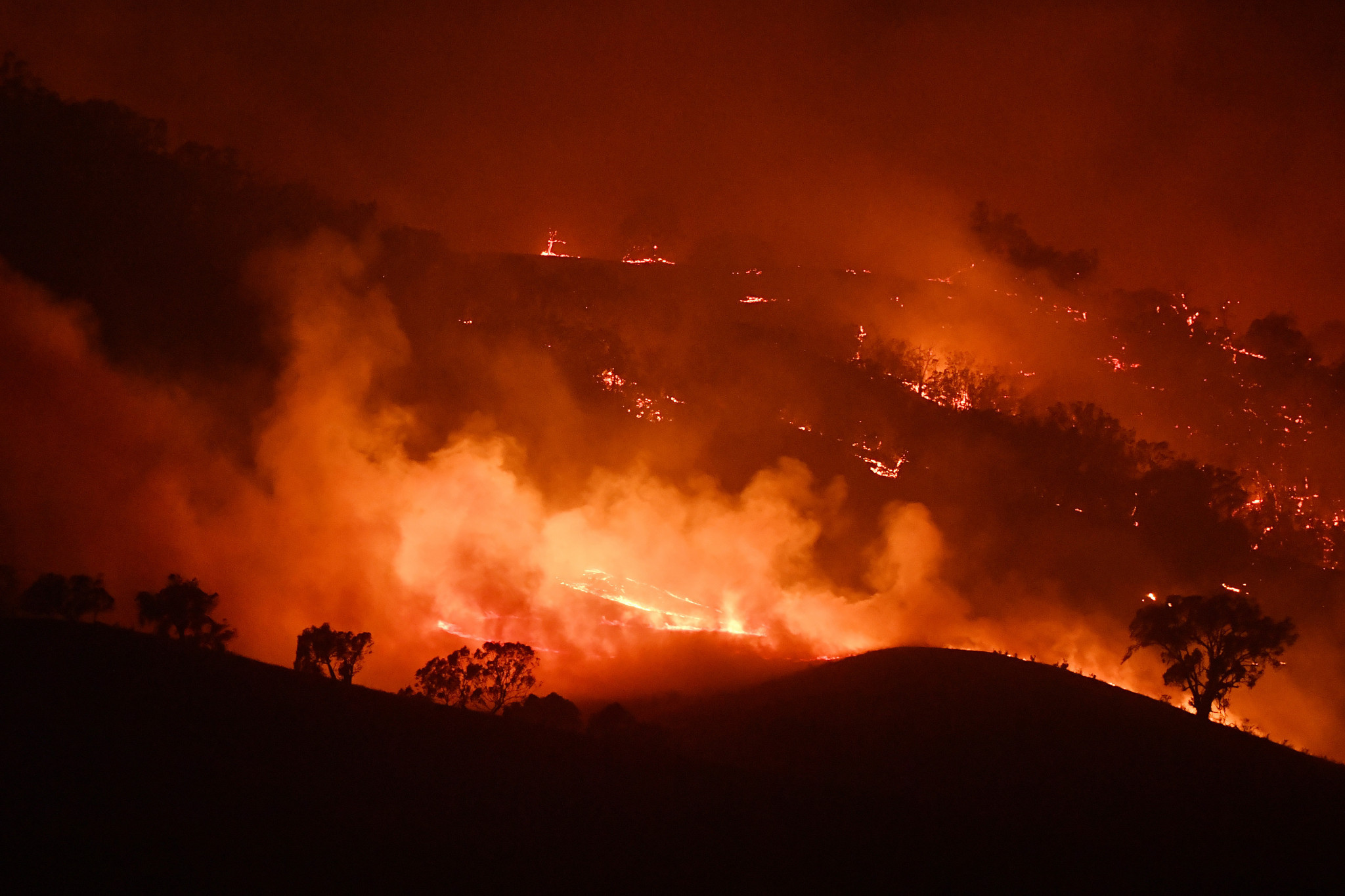 Australian Olympic Committee pledge cash and support for bushfire victims