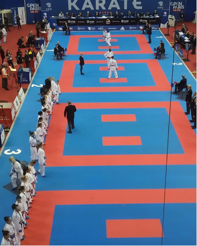 Hosts France qualify two athletes for finals on day one of Karate 1-Premier League in Paris