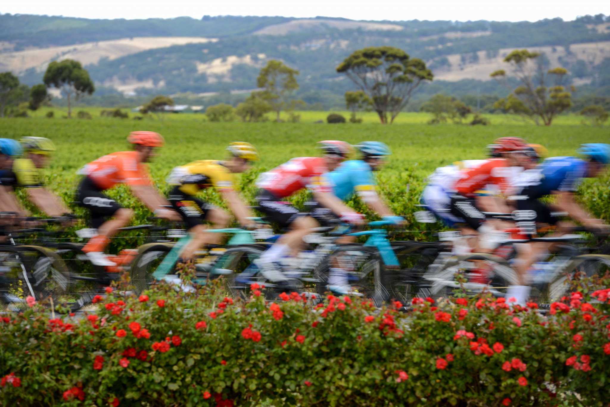The International Cycling Union will join the International Testing Agency ©Getty Images