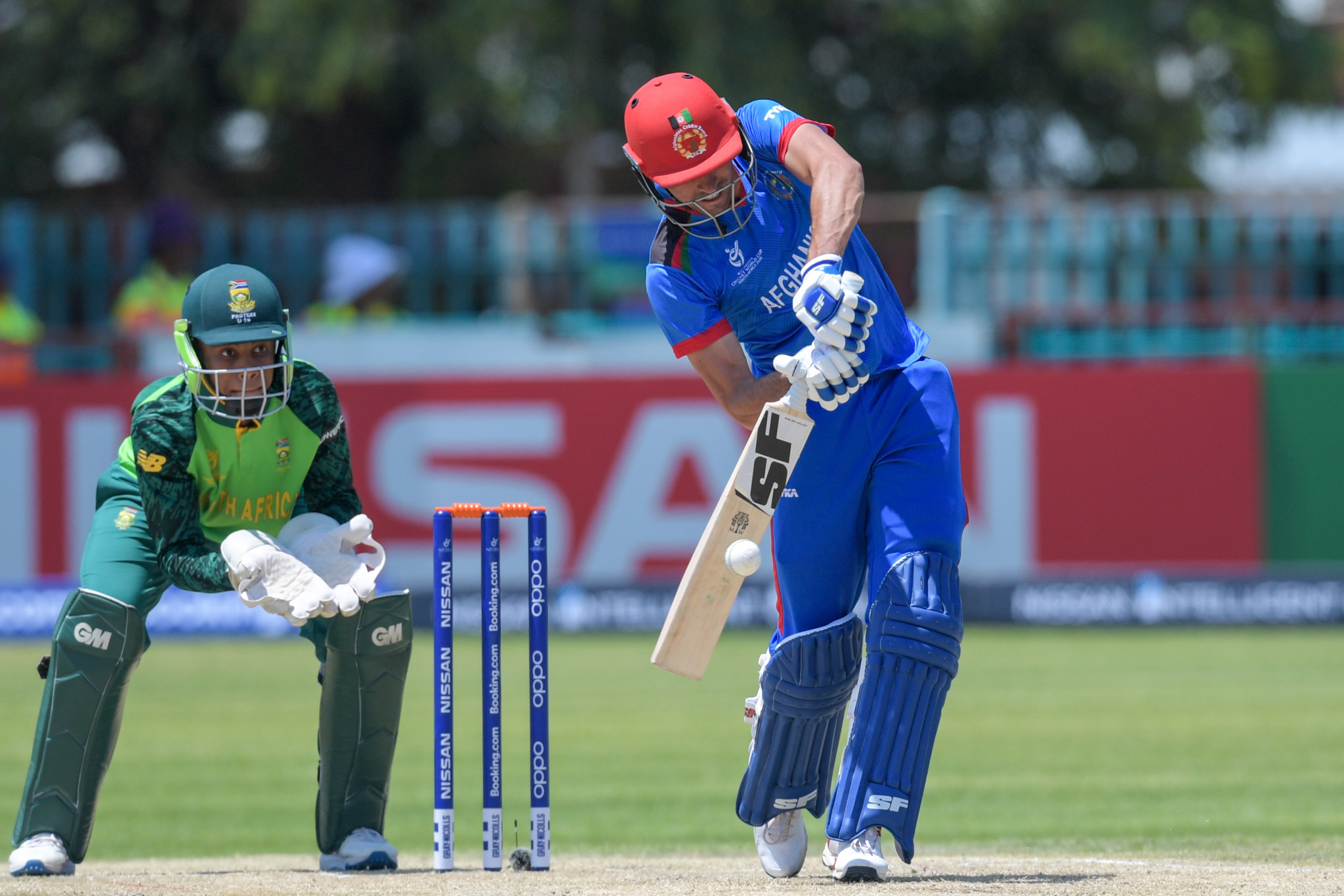 Afghanistan beat hosts South Africa to seventh place in ICC Under-19 World Cup