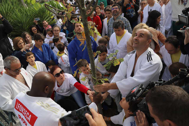 Trees were planted to mark World Judo Day in 2019. ©IJF