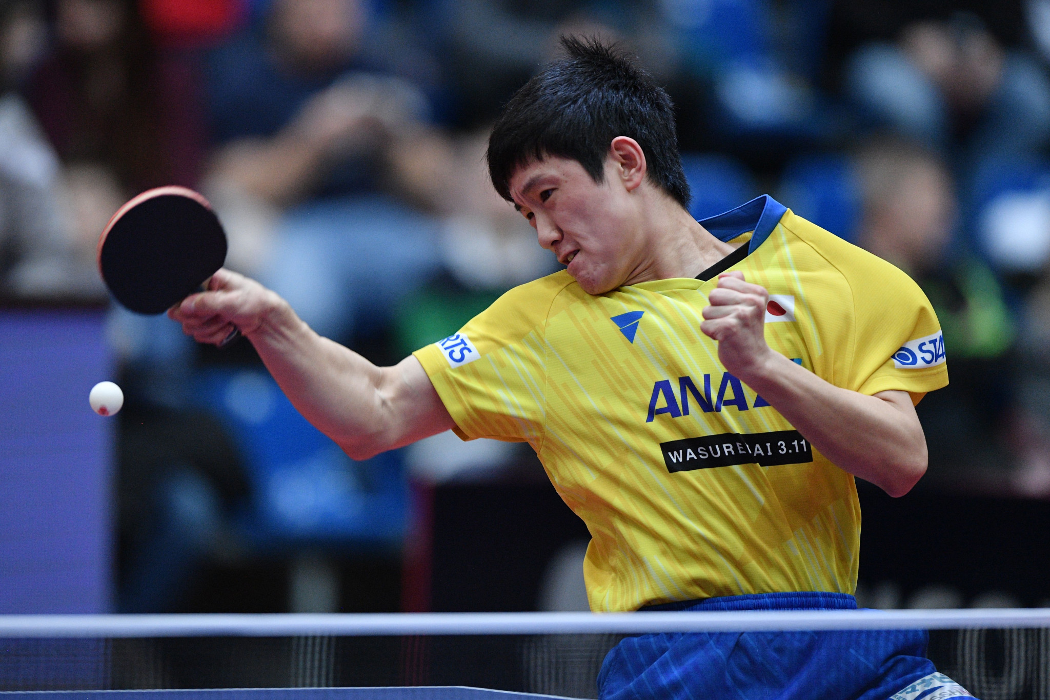 Men's singles top seed Tomokazu Harimoto reached the last eight on a successful day for Japan ©Getty Images