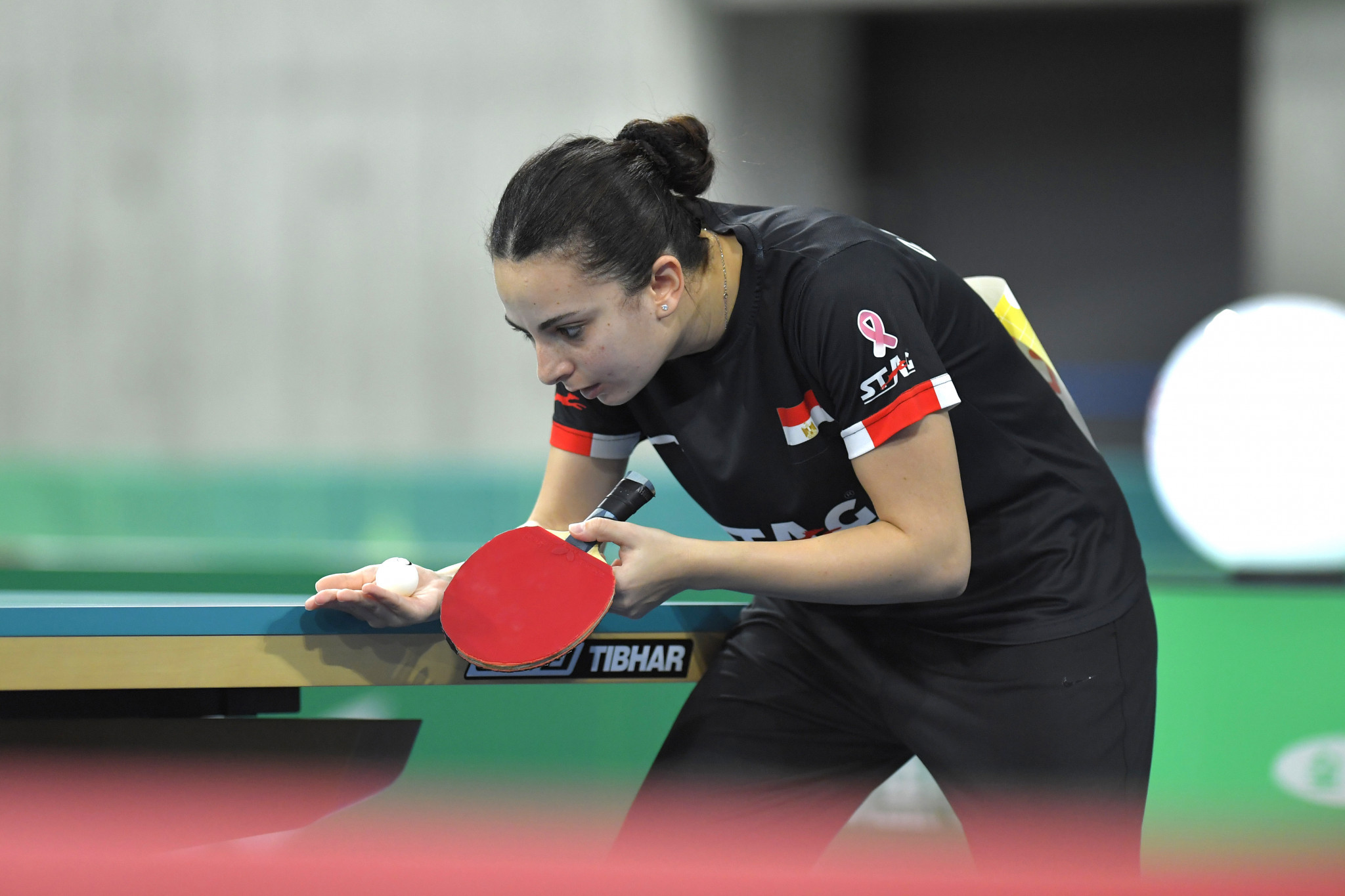 Egypt's Assar and Meshref do not drop a game in qualifying for Tokyo 2020 mixed doubles table tennis