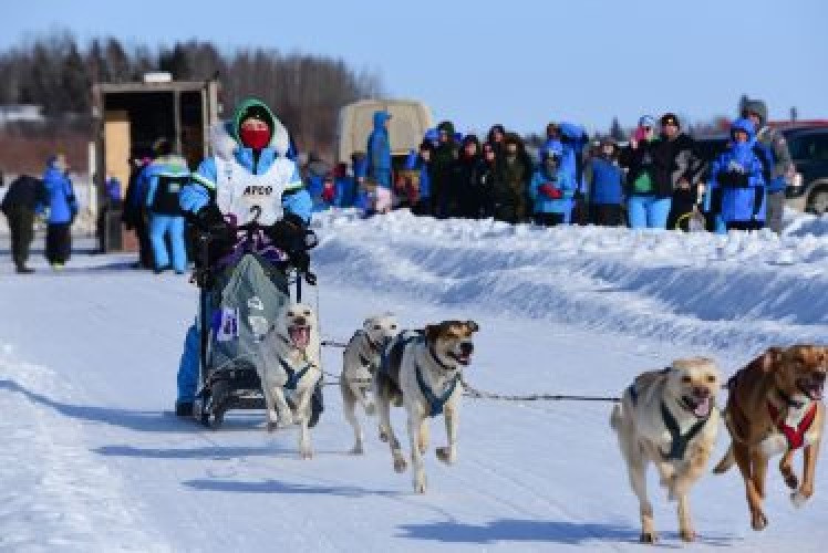 Dog sled racing taking place at the 2018 Arctic Winter Games in the South Slave Region ©Arctic Winter Games International Committee