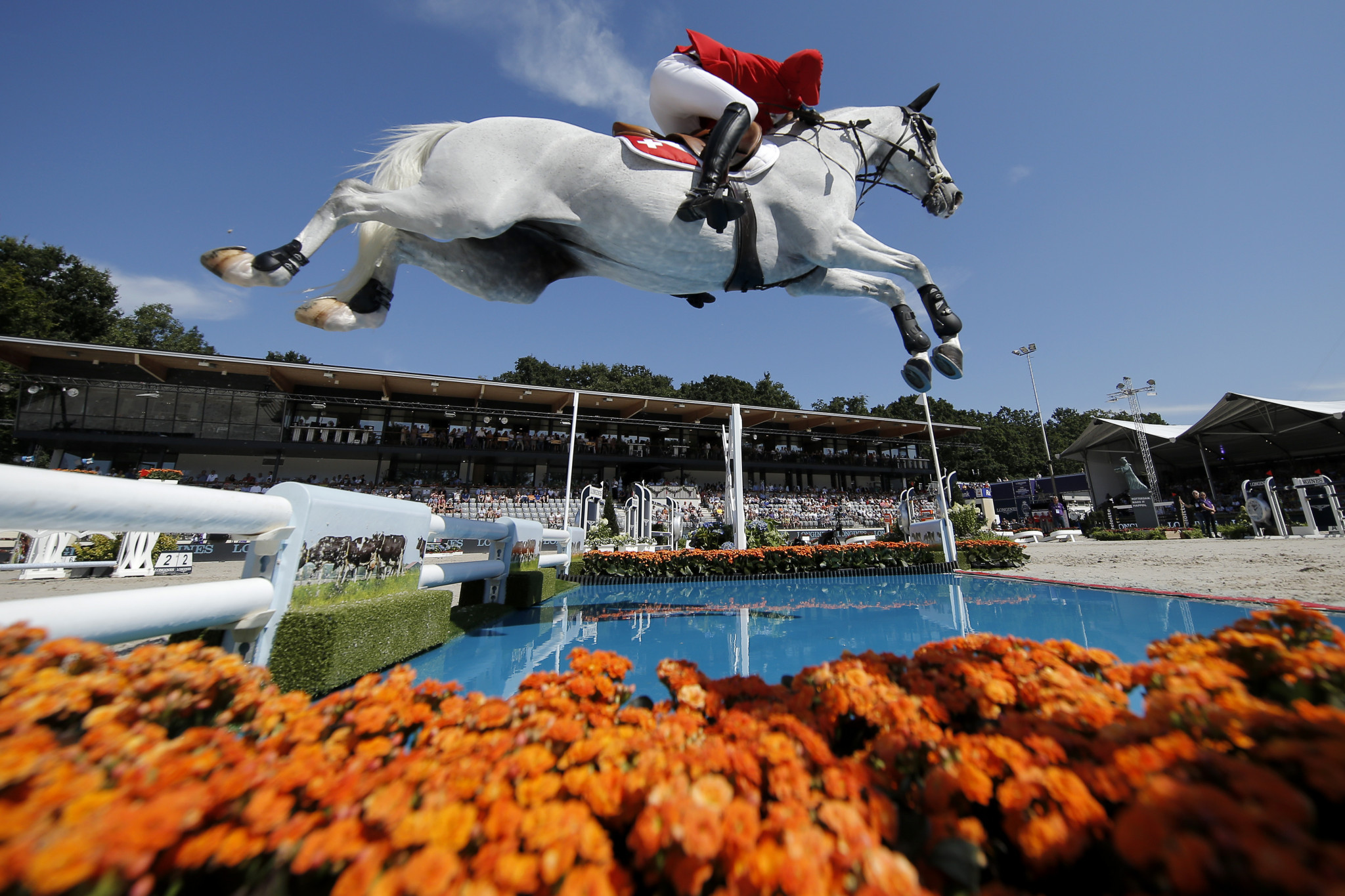 FEI European Championships for Olympic and Paralympic disciplines in 2021 have been cancelled ©FEI