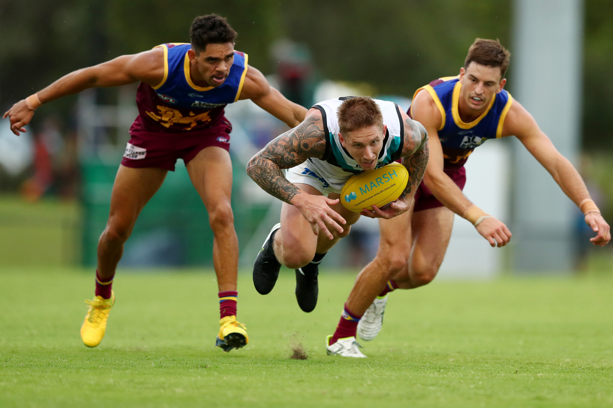 Australian Football League teams to return to training next week