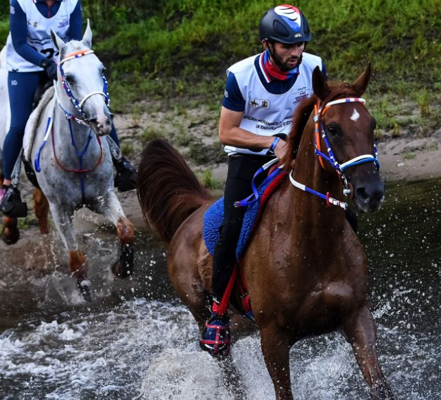 The FEI Endurance World Championships had been due to take place in Pisa in September ©FEI