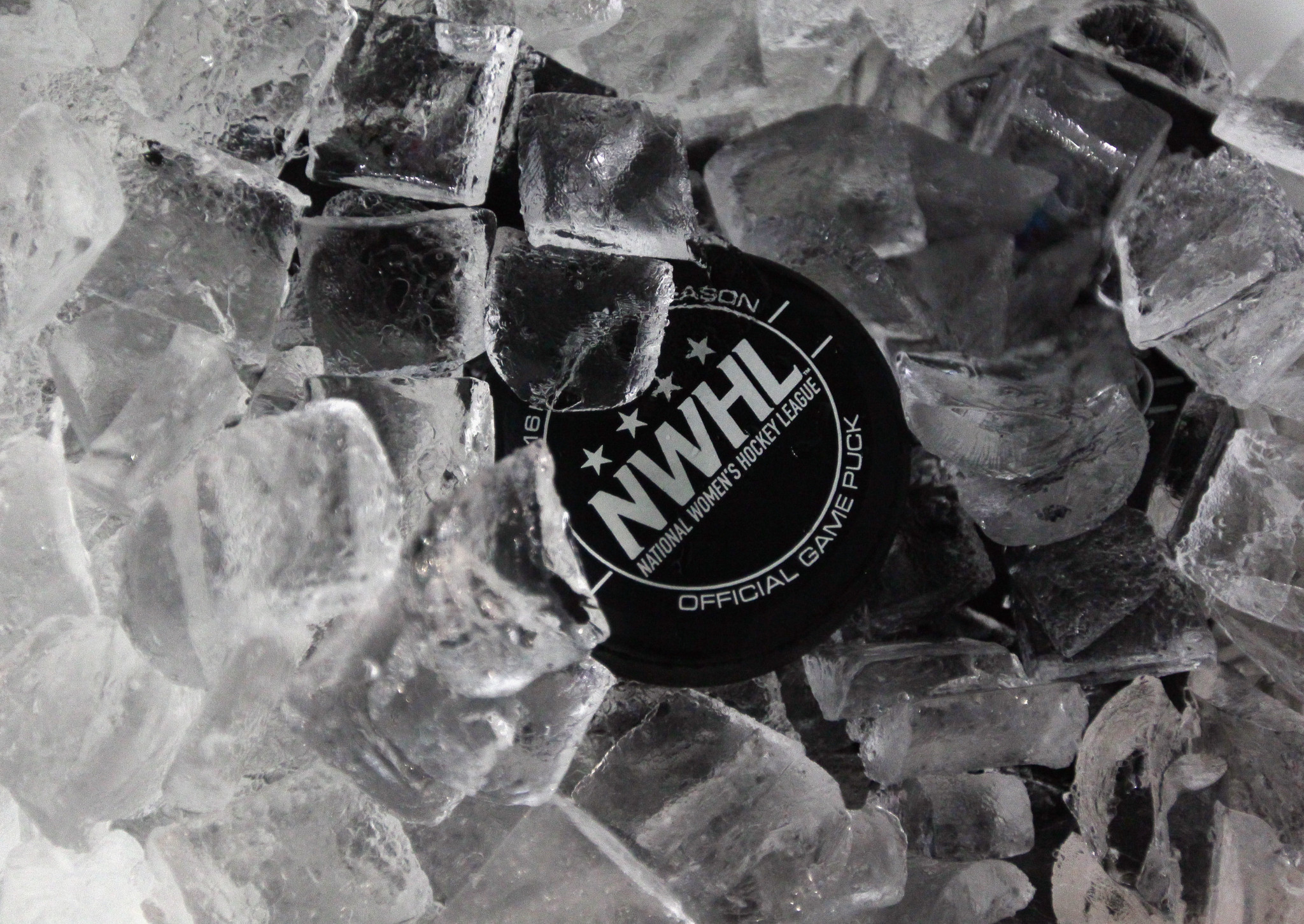 Pandemic delays new NWHL season until 2021