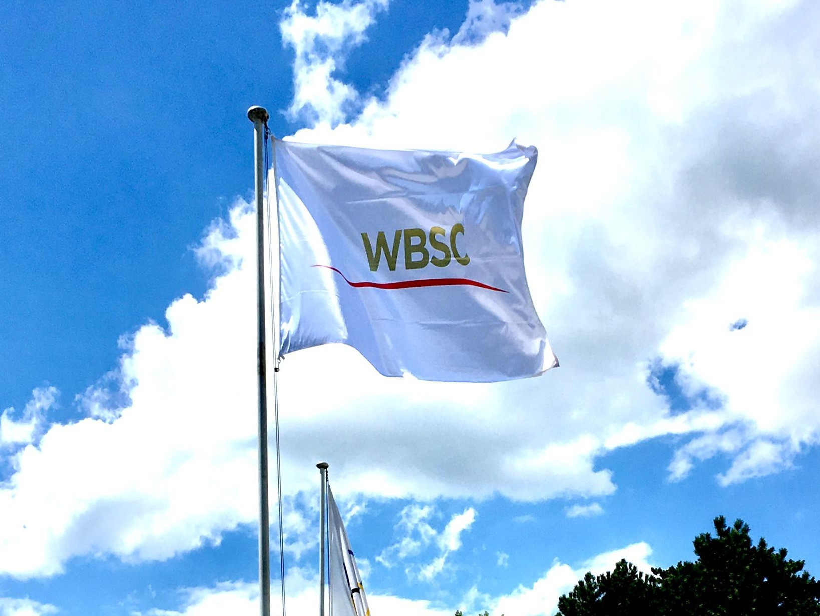 WBSC Presidential Council discuss strategy for during and after coronavirus pandemic
