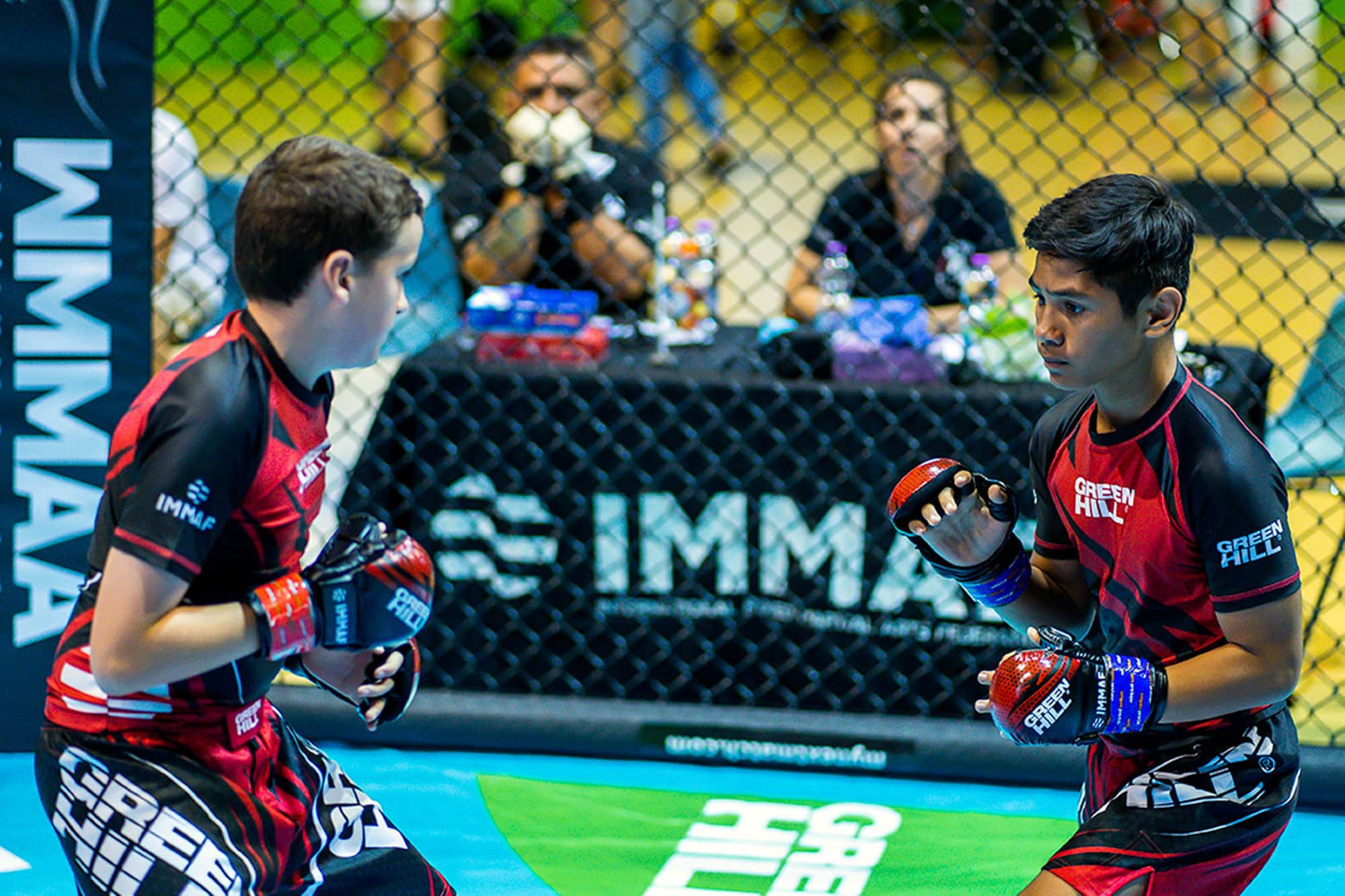 The IMMAF has so far been unable to receive Global Association of International Sports Federations recognition ©IMMAF