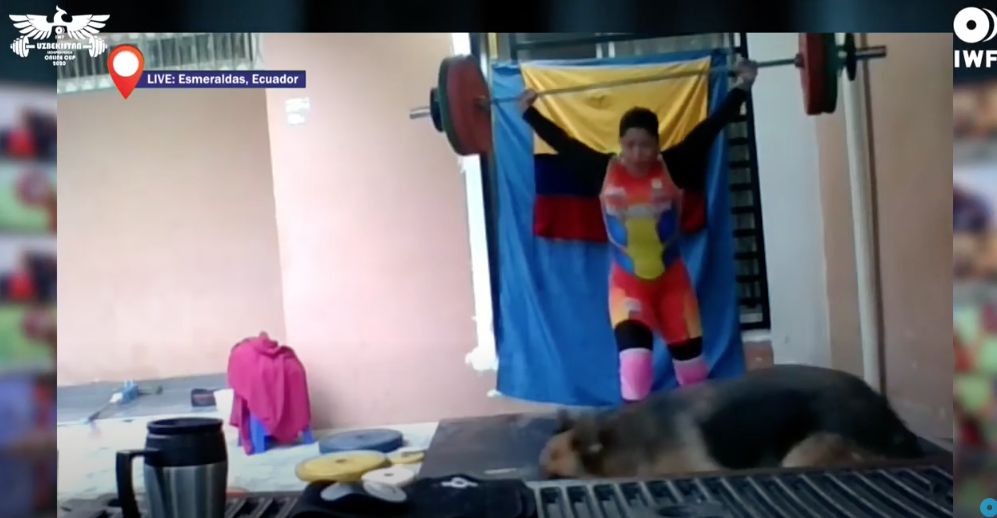 A dog made an appearance during the Online International Weightlifting Cup ©IWF