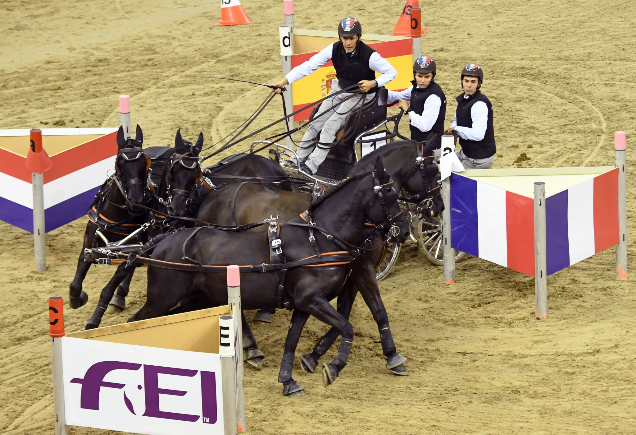 Increase in coronavirus cases forces last-minute cancellation of FEI Driving World Championships