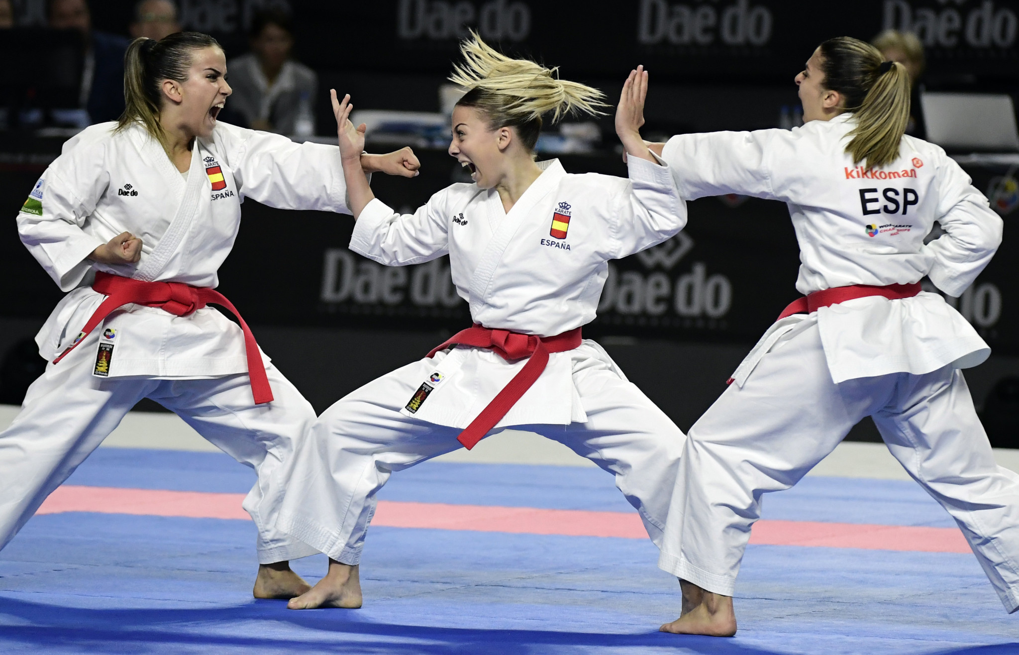 Numerous karate event have been postponed because of the COVID-19 pandemic ©Getty Images