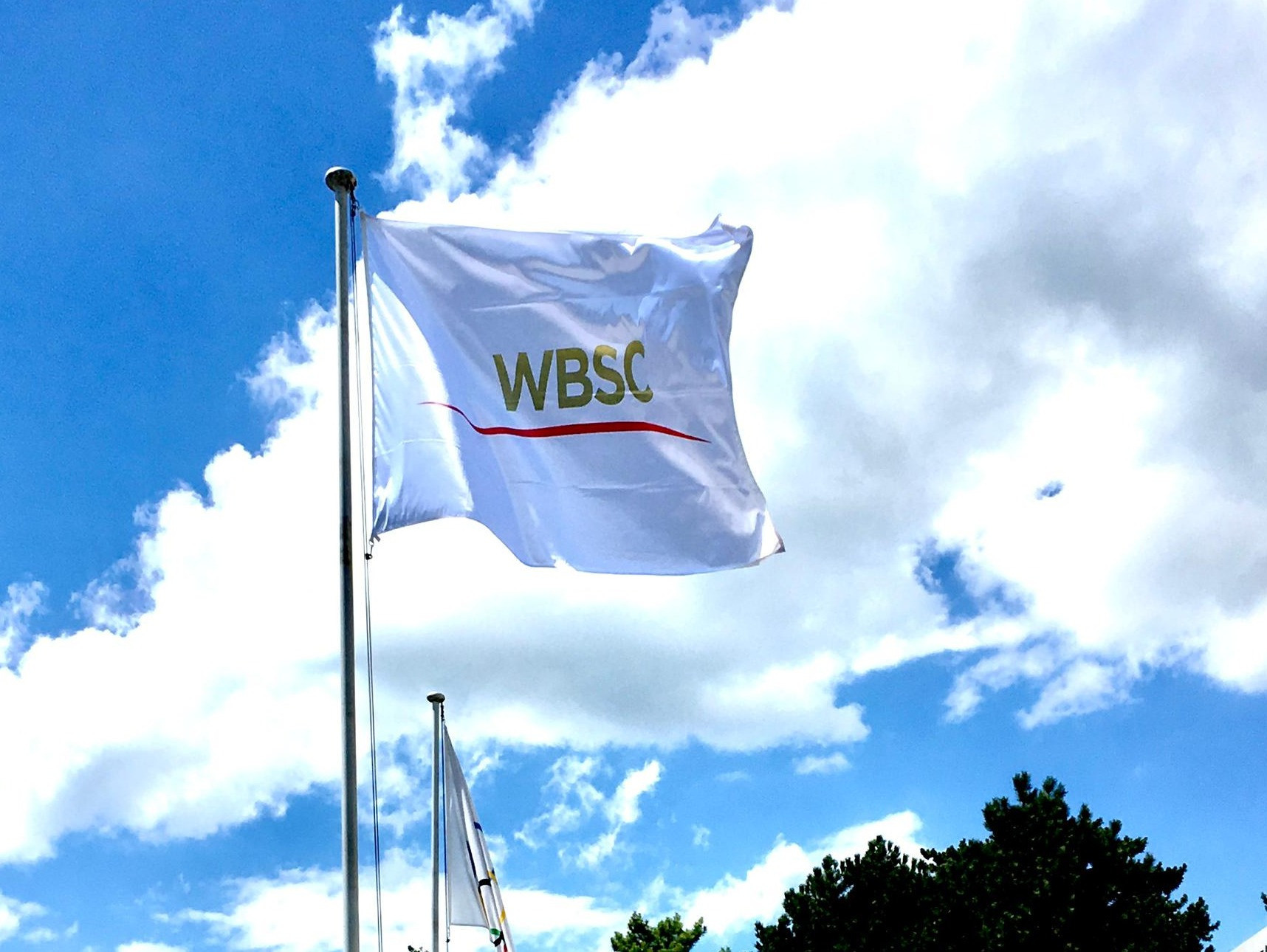 World Baseball Softball Confederation creates integrity unit