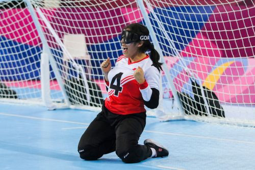 IBSA Goalball is holding an online meeting for the Americas ©IBSA