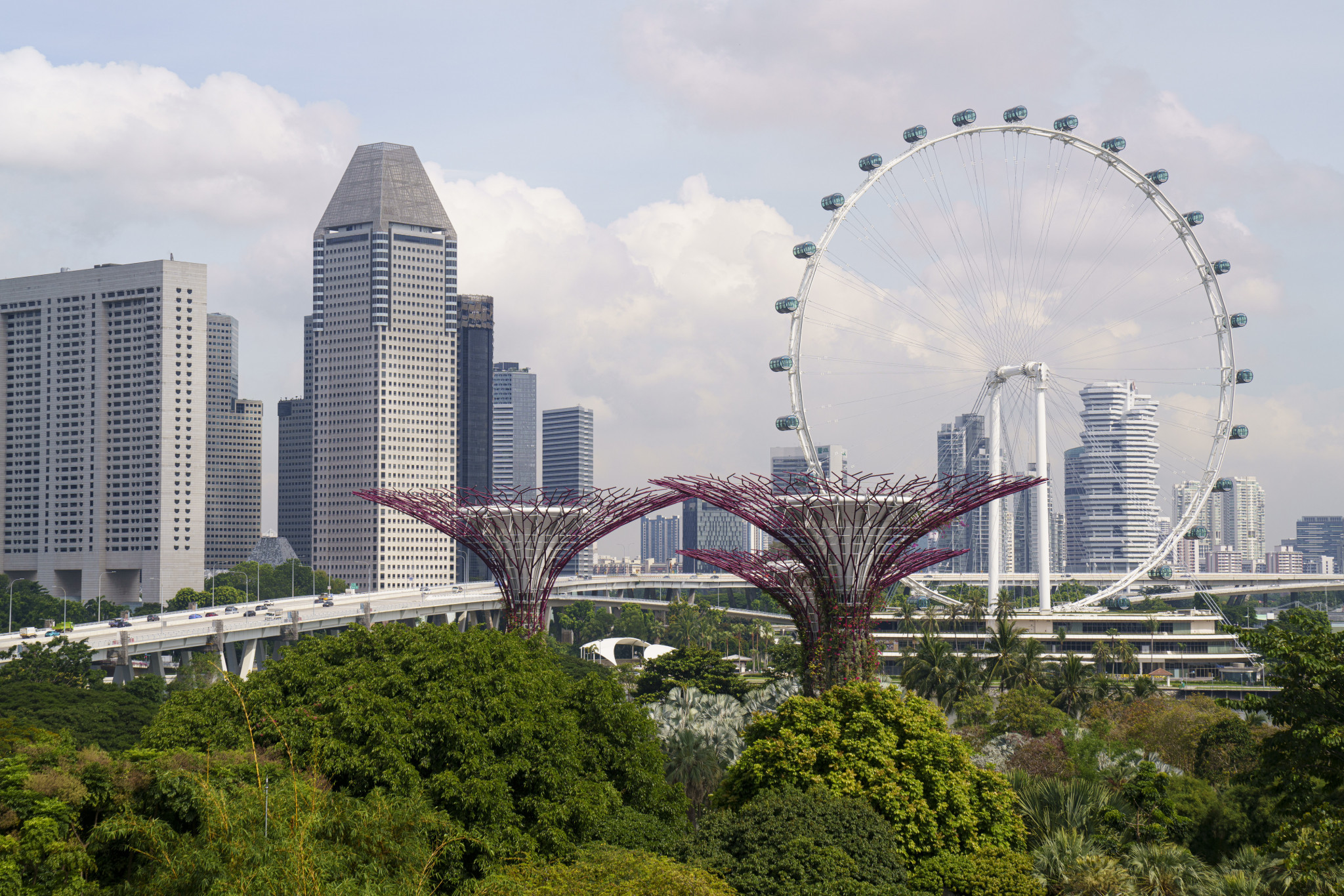 Singapore is set to host the M2 World Championship in January ©Getty Images