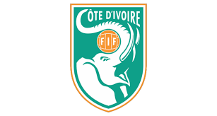FIFA Council appoint committee to assist Ivory Coast football elections