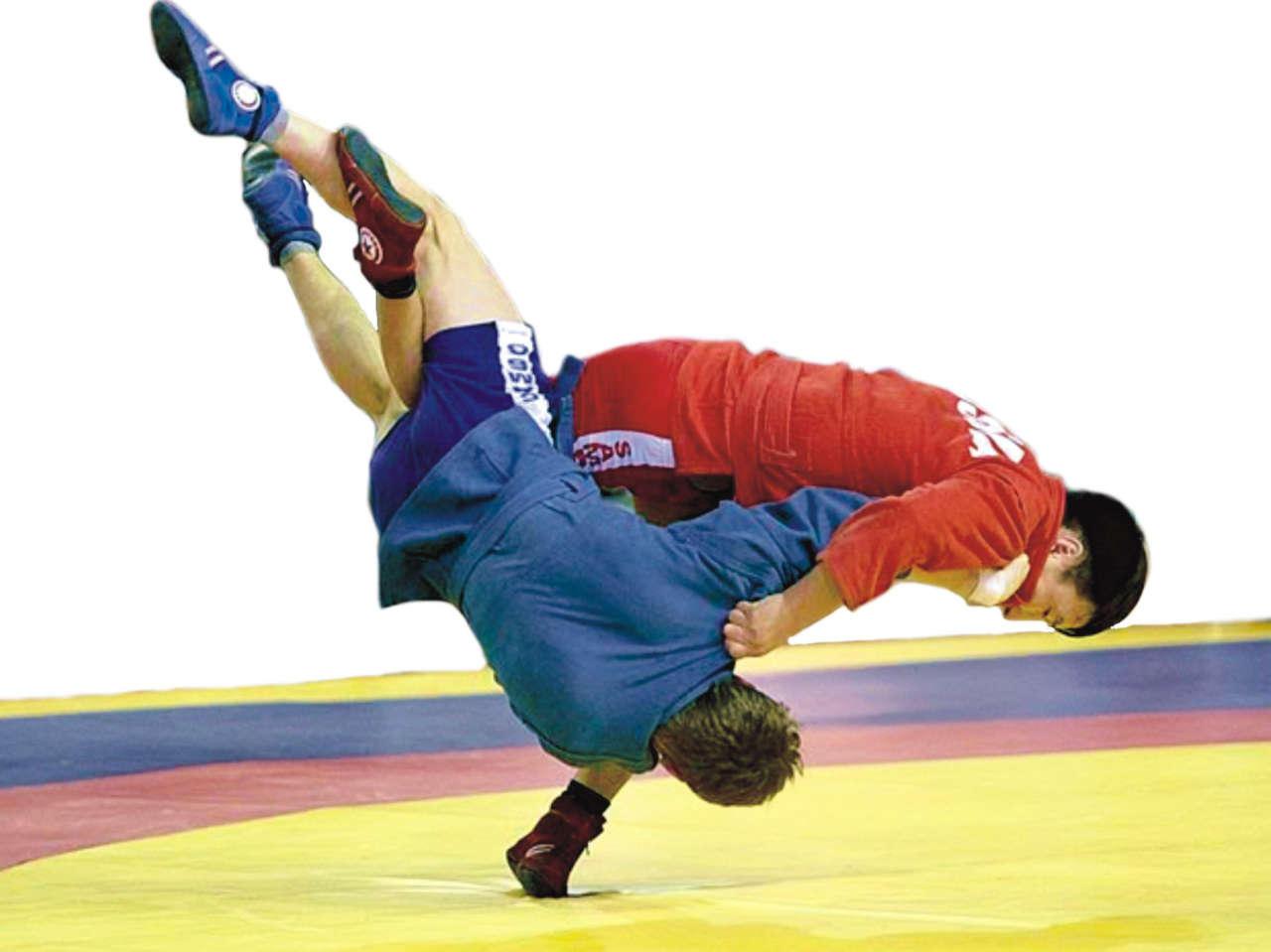 Japan Sambo Championships to be held in February despite COVID-19 threat