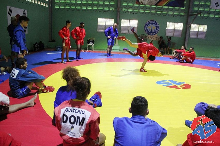 FIAS to launch online sambo educational training session for injury prevention