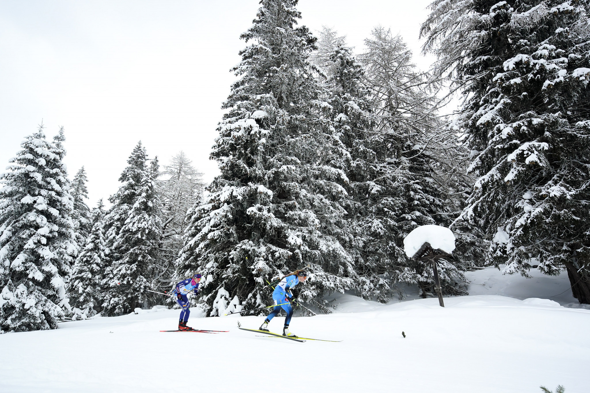 Duszniki-Zdrój to host IBU Open European Championships