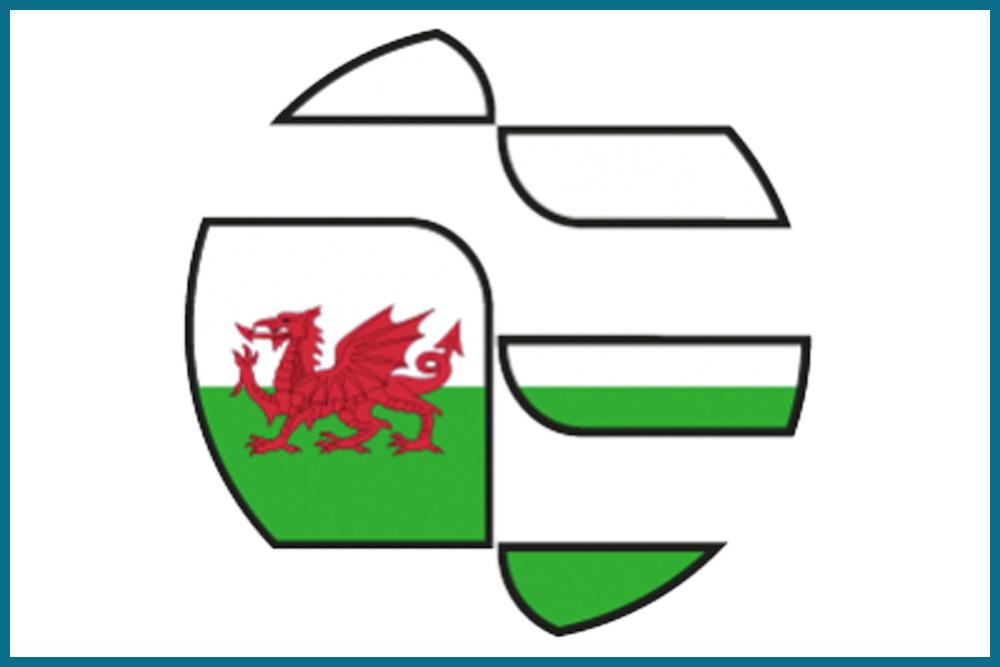 Best IMMAF Mobile Application User: MMA Cymru (Wales)