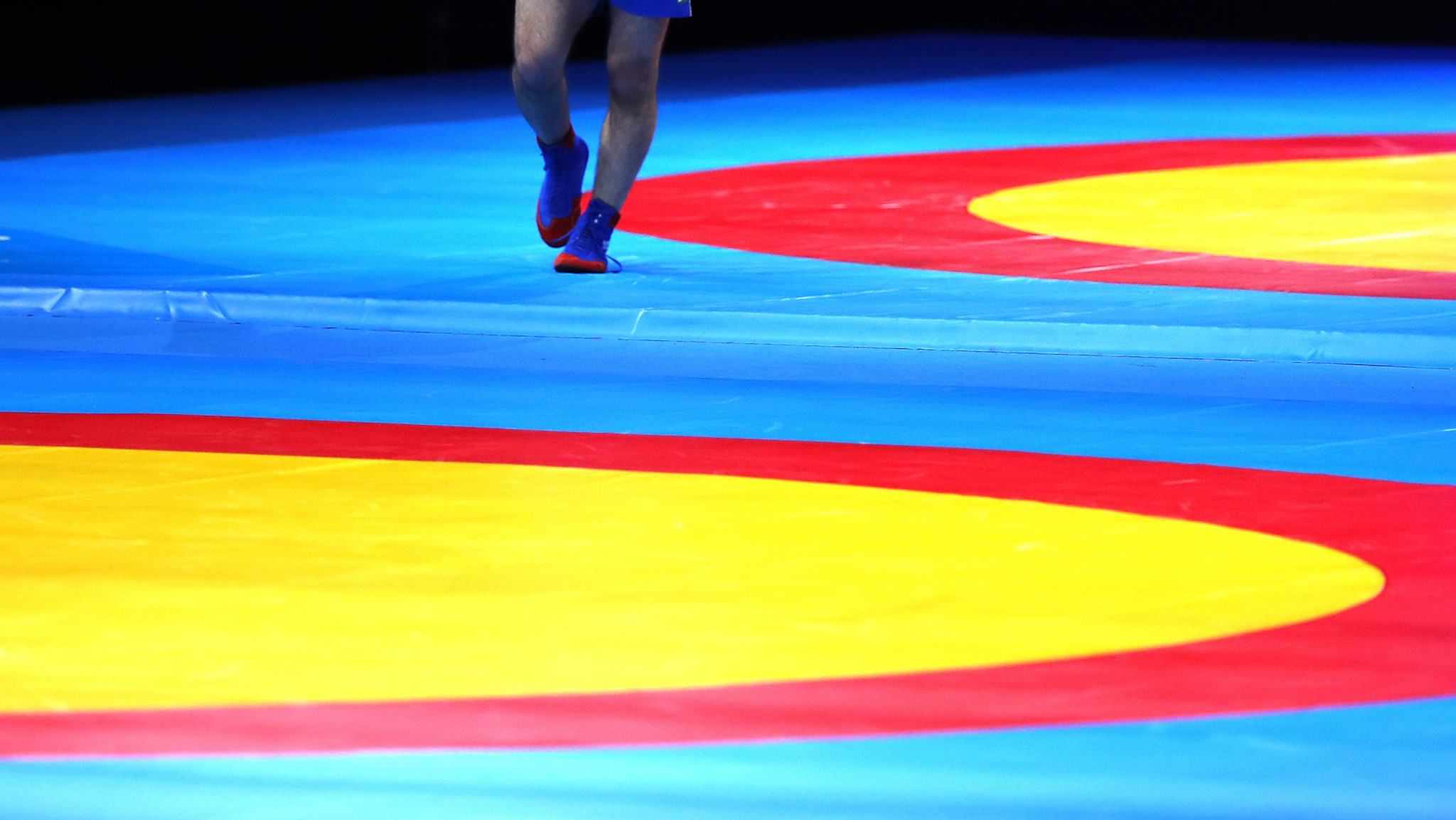 European Sambo Federation schedules Congress during European Championships in May