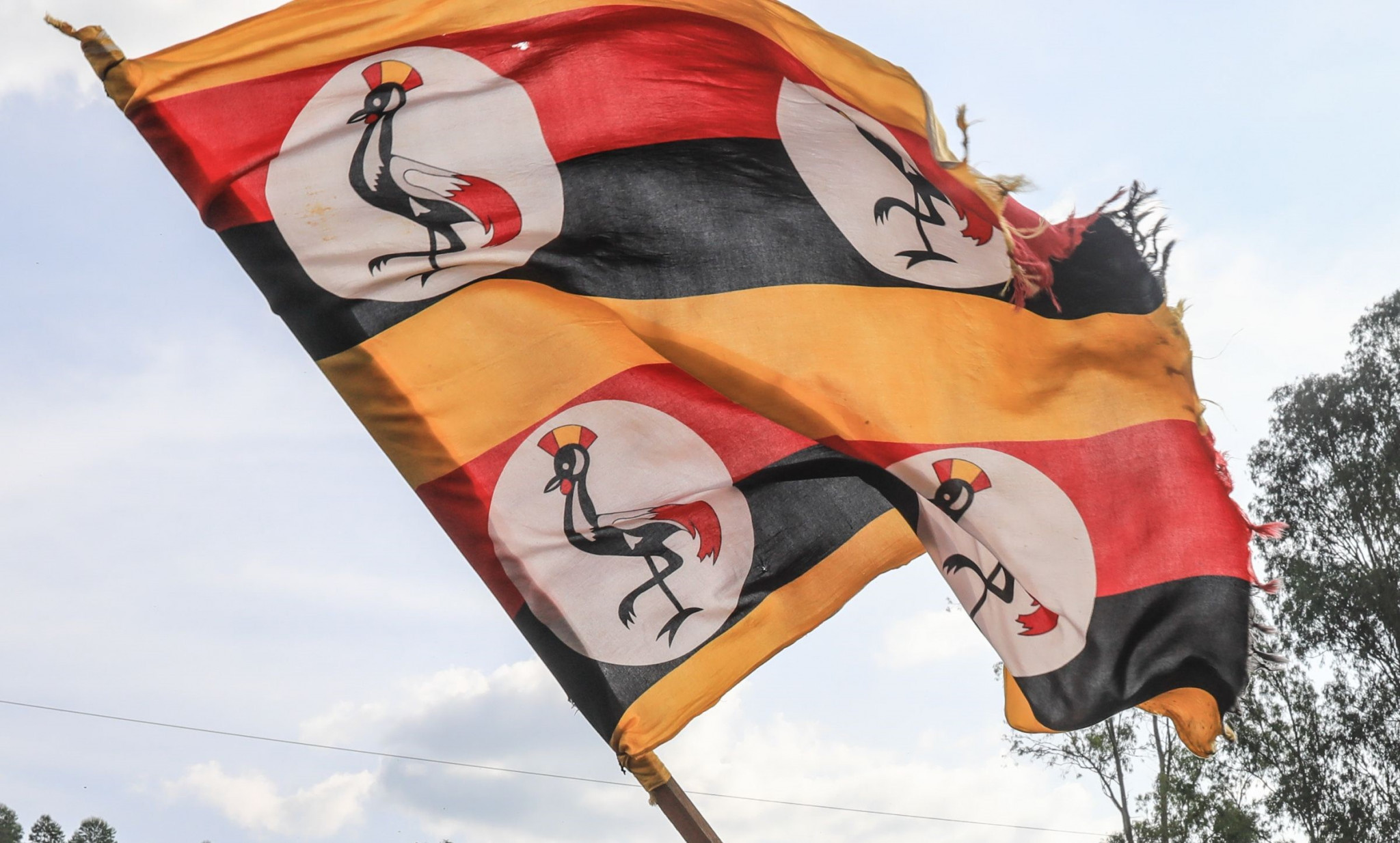 "Interim Uganda Taekwondo Federation President vows to ""bring normalcy back"""
