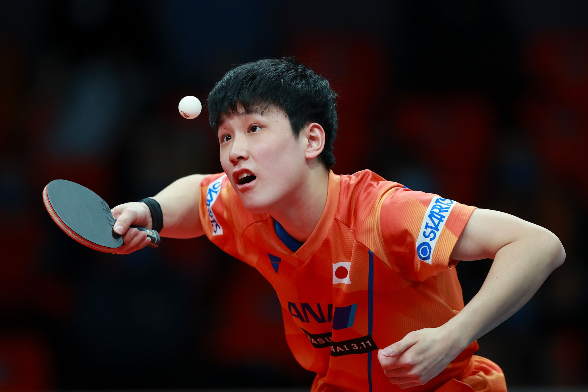 Harimoto and Filus to meet in WTT Star Contender Doha men's singles final