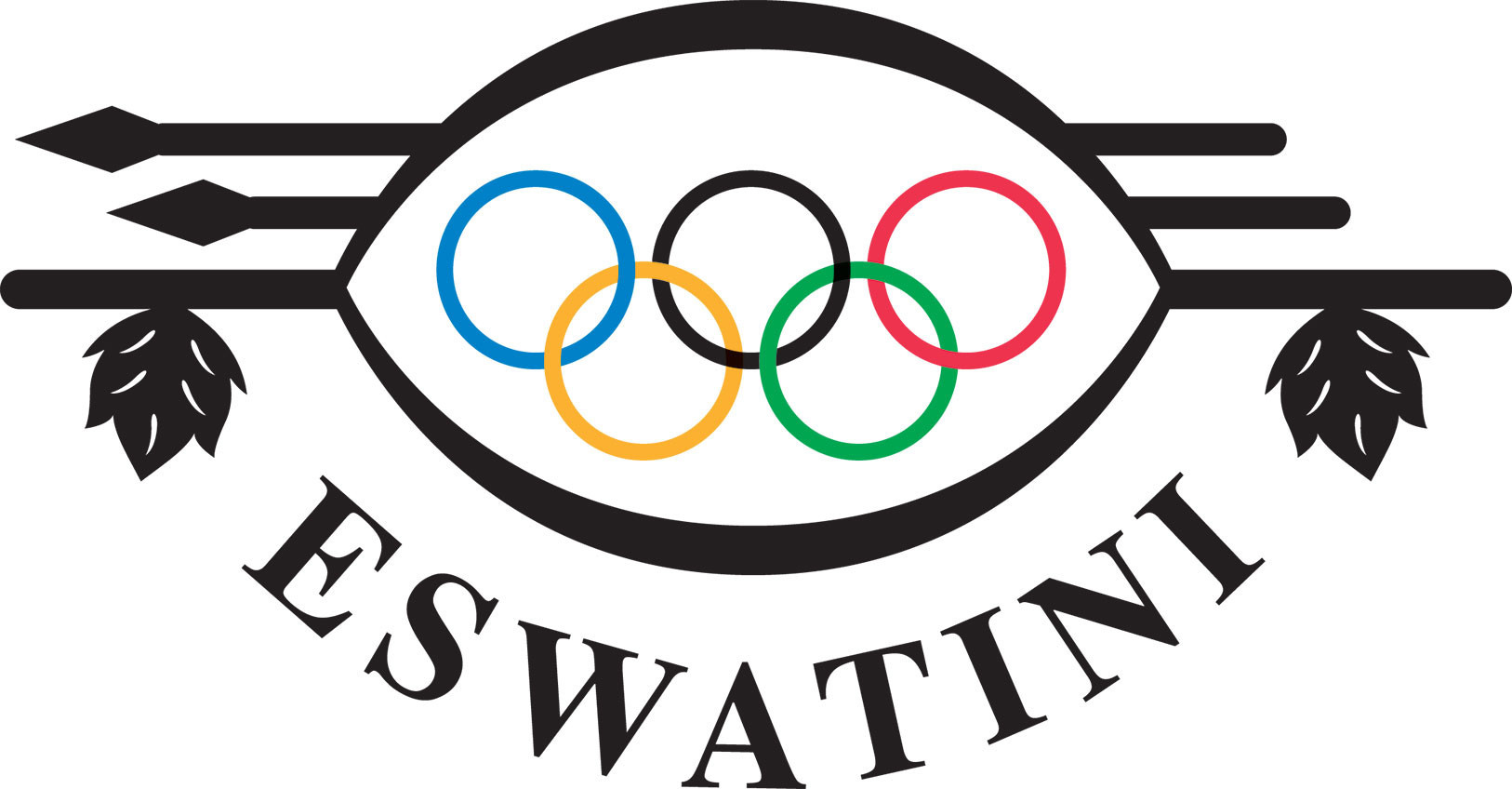 The Teqball Eswatini Federation is now NOC-recognised ©Eswatini Olympic and Commonwealth Games Association