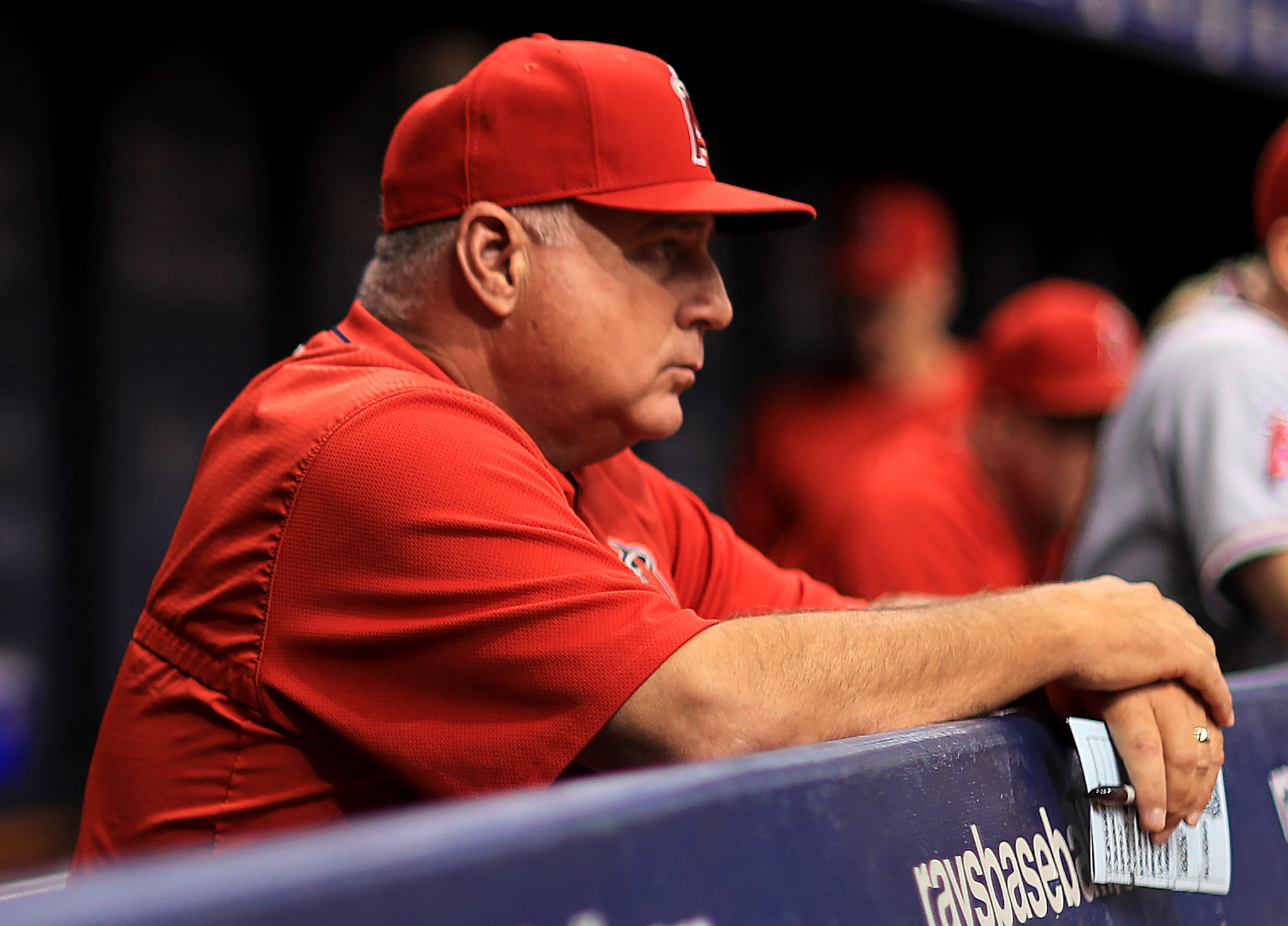 Scioscia sets sights on Olympic gold after securing top job at USA Baseball