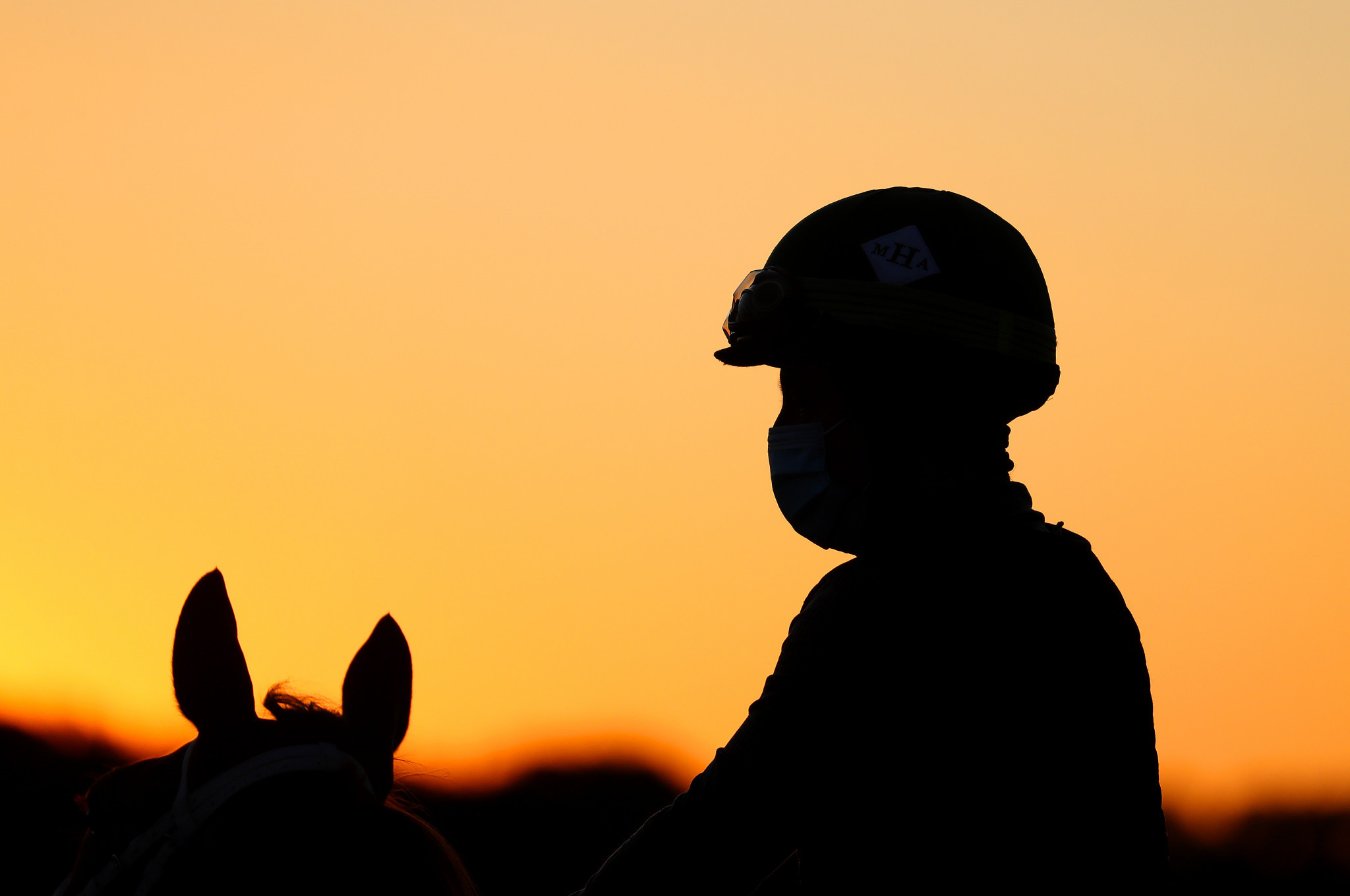 FEI approves return-of-competition bylaws amid equine virus outbreak