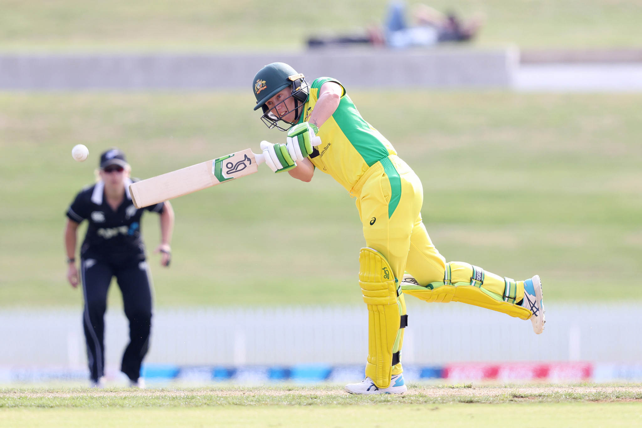 Healy and Azam win ICC Player of the Month honours