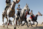 UAE withdraws appeal against equestrian suspension
