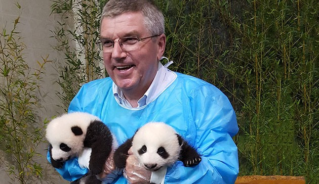The International Olympic Committee has made a donation of $50,000 to a giant panda breeding centre in China ©IOC