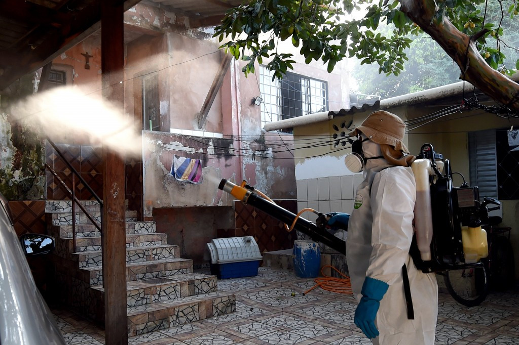 Eradicating mosquitoes is seen as the best defence against Zika