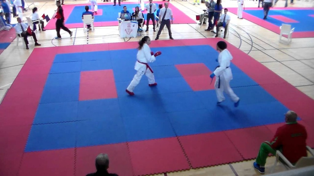 Three golds for Morocco as Karate 1-Premier League leg opens in Rabat