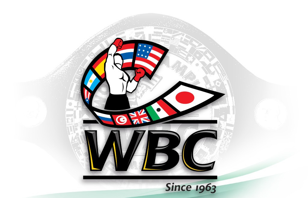 WBC reveal number of negative tests as part of Clean Boxing Programme