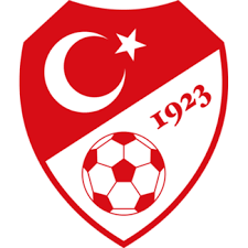The Turkish FA says all members of its Committees have stepped down to help the investigation into US-based cleric Fethullah Gulen ©TFF