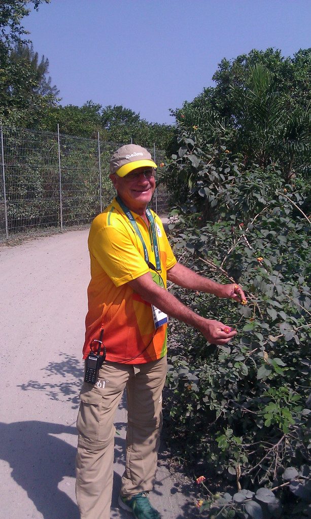 Guide Mario Rodnitzky with the lantana camara plant that has helped to entice a rare butterfly back to Barra da Tijuca ©ITG