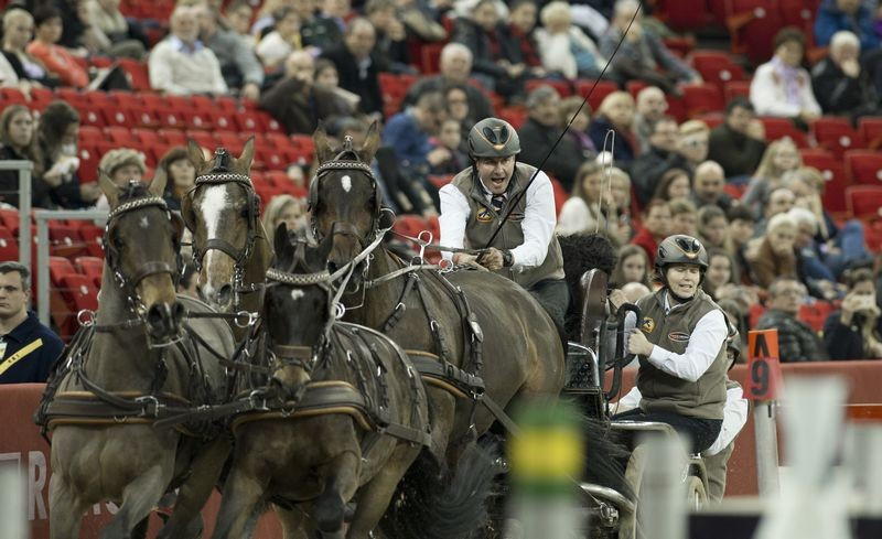 De Ronde upsets home favourite Dobrovitz in third leg of FEI Driving World Cup in Budapest
