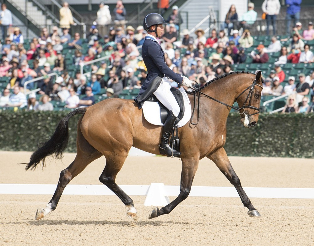 Montgomery takes lead at Kentucky Three-Day Event