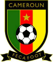 Cameroon official accuses FIFA of ignoring CAS verdict on disputed FECAFOOT elections