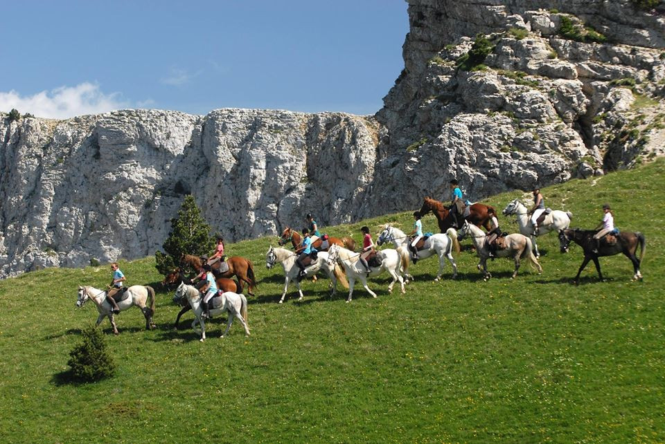 The International Federation of Equestrian Tourism oversees all tourism activities involving the use of horses ©FITE