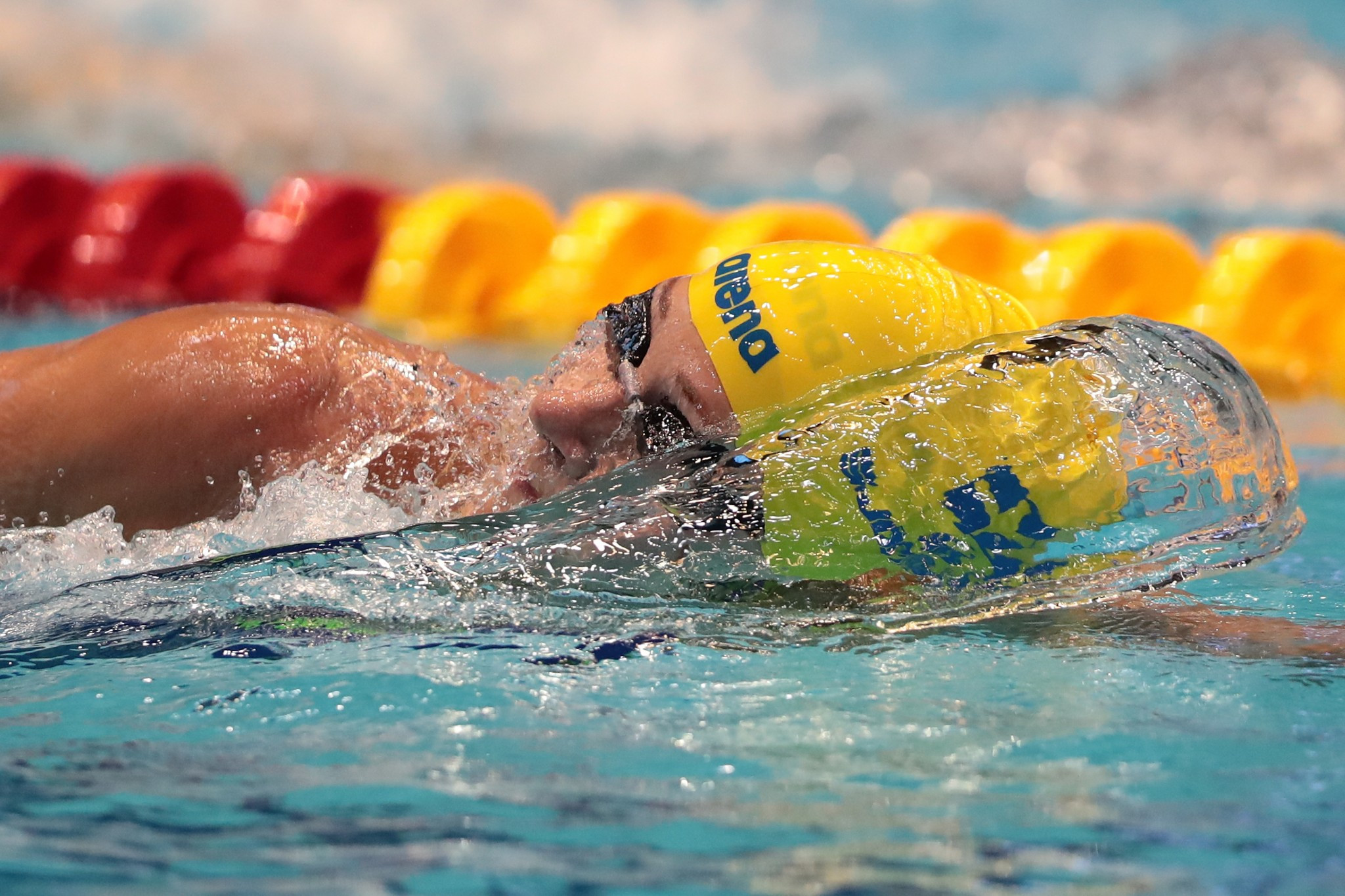 Sjöström in world record-breaking form once more at FINA World Cup in Eindhoven