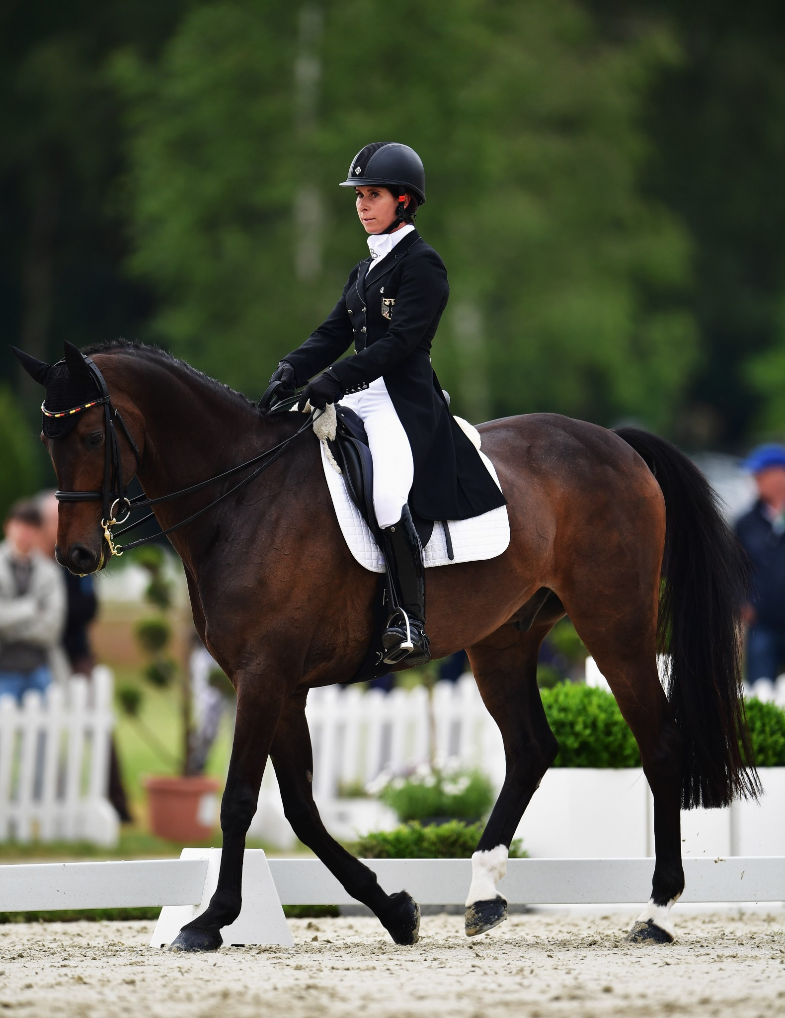 Bettina Hoy leads after the opening day of dressage ©Getty Images