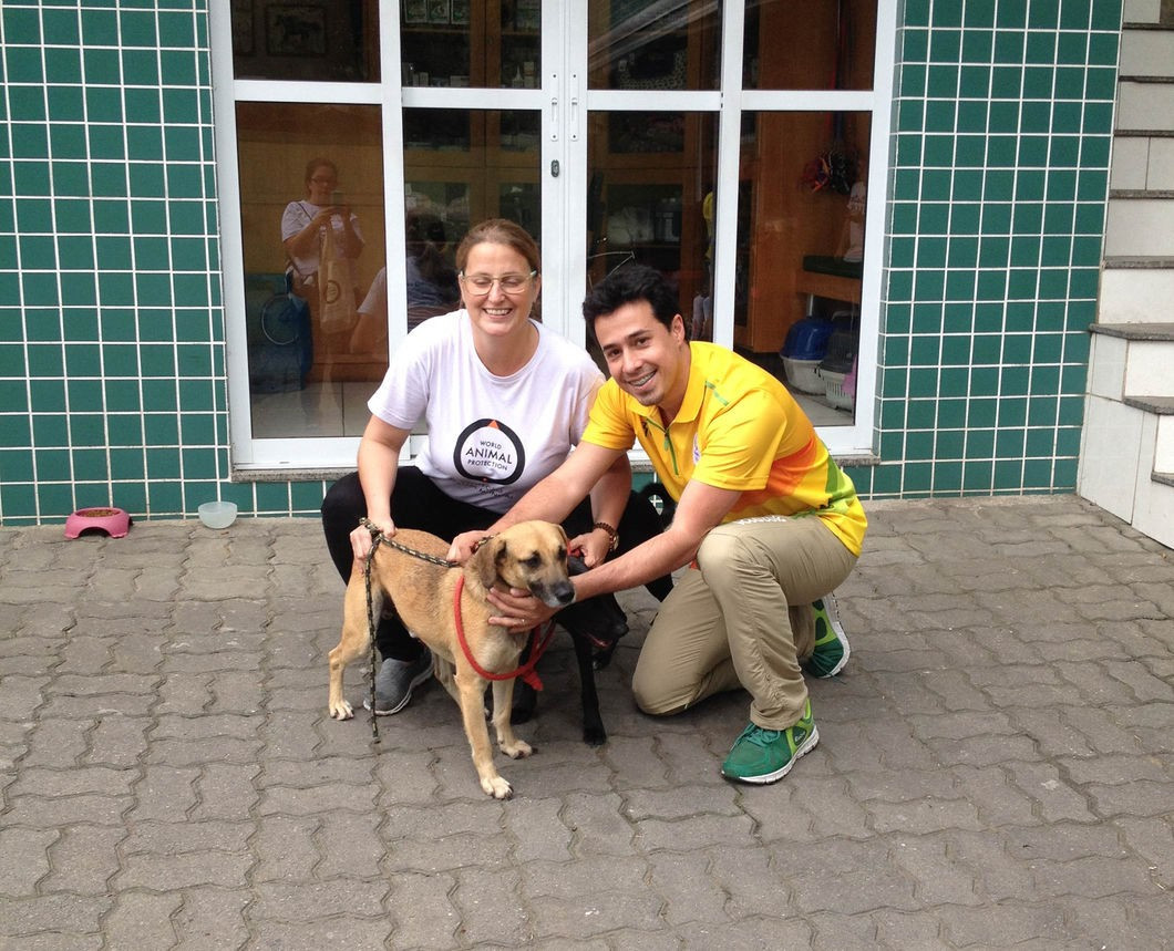 Rio 2016 Animal Management Service rescued almost 100 strays from Olympic venues
