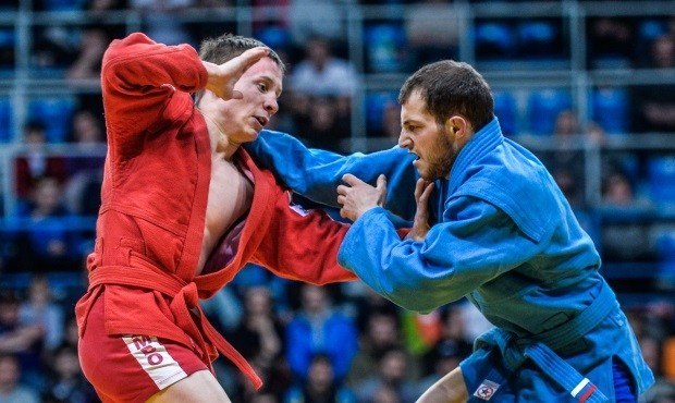 Sambo should become trademark of Russian sport, leading official claims