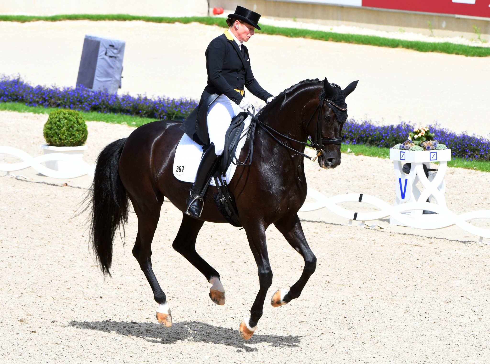Werth on top again before shock Ireland win at FEI European Championships
