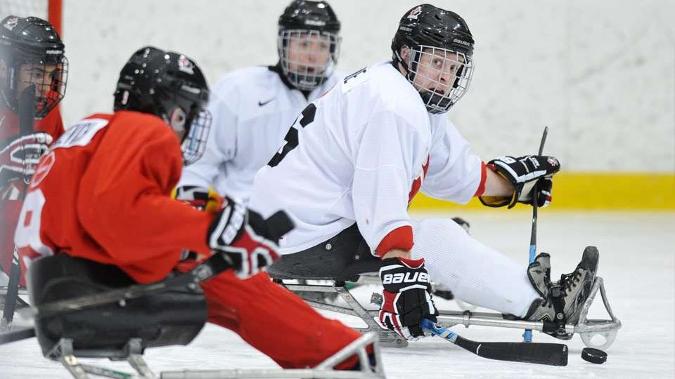 Hockey Canada invites players to national sledge team selection camp