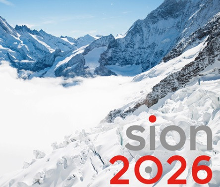 Sion's bid for the 2026 Winter Olympic and Paralympic Games has been given a significant boost after the Federal Council confirmed their support for the project ©Sion 2026